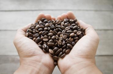 Знижка 15% на дегустаційні набори кави
